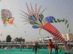 Colorful kites in the Gujarat kite festival