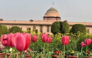 Mughal Gardens to open for public from Tuesday
